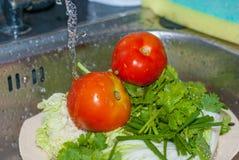 Två röda nya tomater och grön persilja göras ren av vatten som ner faller från flik Arkivfoton