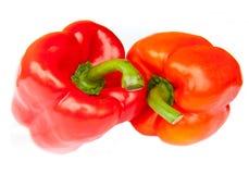 Två röda peppar som isoleras Royaltyfri Foto