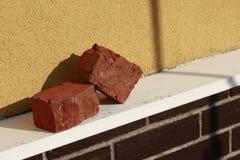 Två röda tegelstenar på tegelstenväggs avsats royaltyfri fotografi