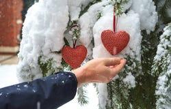 Två röda textilhjärtor och mans händer på tung snöig granfilialbakgrund, nära hus för röd tegelsten lyckligt glatt nytt år för ju royaltyfria bilder