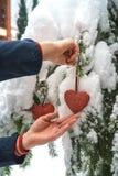 Två röda textilhjärtor och mans händer på tung snöig granfilialbakgrund, nära hus för röd tegelsten lyckligt glatt nytt år för ju royaltyfri foto