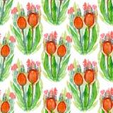 Två röda tulpan Royaltyfri Illustrationer