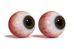 Två realistiska mänskliga ögon med den bruna irins som isoleras på vit bakgrund 3d, framför Royaltyfri Fotografi