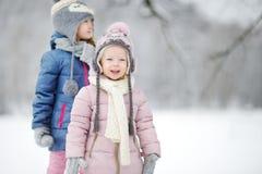 Två roliga förtjusande lilla systrar som har gyckel i härlig vinter, parkerar tillsammans under snöfall Royaltyfria Bilder