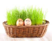 Två roliga le ägg i korg med gräs. sunbad. Arkivfoton