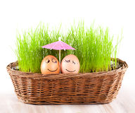 Två roliga le ägg under paraplyet i korg med gräs. sunbad. Arkivfoto