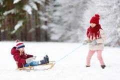 Två roliga små flickor som har gyckel med en sleight i härlig vinter, parkerar Gulliga barn som spelar i en snö Fotografering för Bildbyråer