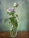 Två rosa rosor i en glasflaska Royaltyfria Foton