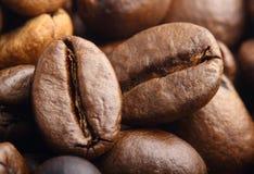 Två rosted extrema kaffebönor arkivbilder