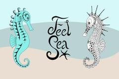 Två seahorses och den calligraphic inskriften med känsel royaltyfri illustrationer