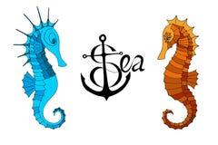 Två seahorses och en calligraphic inskrift med ankaret royaltyfri illustrationer
