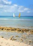 Två segelbåtar i Atlanticet Ocean Royaltyfri Foto