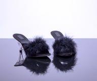 Två skor med fjädrar Royaltyfri Fotografi