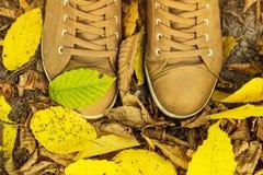 Två skor på stupade sidor höstbakgrundscloseupen colors orange red för murgrönaleaf royaltyfri fotografi