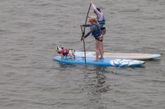 Två skovelsurfare med två hundkapplöpning på surfingbrädor på vattnet av Morro skäller Royaltyfri Fotografi