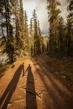 Två skuggor som rymmer händer i guld- ljus Down en Forested bana Royaltyfri Fotografi