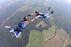 Två skydivers i randiga T-tröja flyger i himlen royaltyfri foto