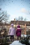 Två små flickor i bygden som håller ögonen på en flock av fåglar Arkivfoton