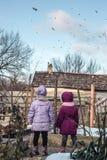Två små flickor i bygden som håller ögonen på en flock av fåglar Fotografering för Bildbyråer