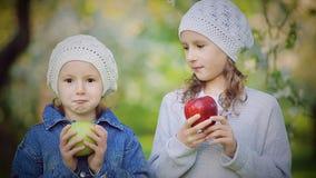 Två små flickor som äter röda och gröna äpplen i blomma, parkerar arkivfilmer