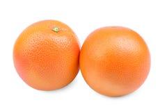 Två smakliga apelsiner som isoleras på en vit bakgrund Näringsrik och saftig apelsin Nya och mogna apelsiner apelsiner för citrus Royaltyfri Bild