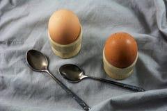 Två smakliga bruna ägg i äggkoppar med skedar Arkivfoto