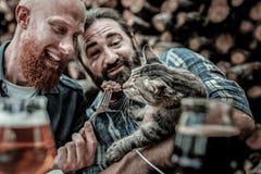 Två snälla män som matar en tillfällig katt royaltyfria foton