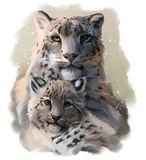 Två snowleopards stock illustrationer