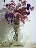 Två sorter av torkade blommor i den genomskinliga flaskan royaltyfri foto