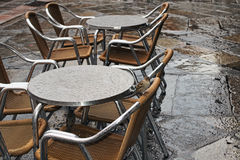 Två sparvar döljer under tabellen från regnet Salamanca Arkivfoto