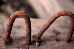 Två spikar stålsätter rost med krökt vriden form på trä, och en raksträcka spikar i trä royaltyfri bild