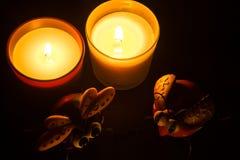 Två stearinljus och två isects i en svart ram Royaltyfri Foto