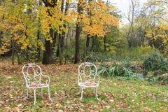 Två stolar i skogen i höst Fotografering för Bildbyråer