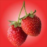 Två stora jordgubbar är lågt poly stock illustrationer