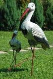 Två storkar på en grön gräsmatta Arkivfoton