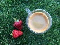 Två strawberrys med koppen kaffe på gräset Arkivbilder