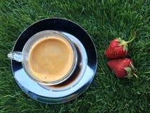 Två strawberrys på gräset med koppen kaffe Fotografering för Bildbyråer