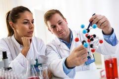 Två studenter av kemi som ser den molekylära modellen och framställning royaltyfria bilder
