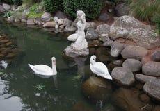 Två svanar i ett damm med antik skulptur Royaltyfria Bilder