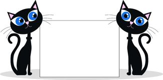 Två svarta katter Arkivfoton