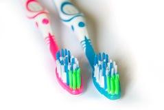 Två tandborstar som isoleras på vit bakgrund royaltyfri bild