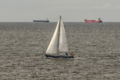 Två tankfartyg och en segelbåt på havet Royaltyfria Foton