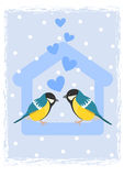 Två tits i fågelförlagematare Arkivfoto