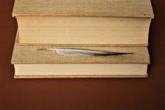 Två tjocka böcker och tunn feather/penna royaltyfri fotografi