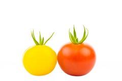 Två tomater 2 Arkivfoto