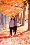 Två tonåriga flickor som tillsammans går under färgrikt höstlönnträd Fotografering för Bildbyråer