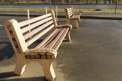 Två träbänkar i parkera Royaltyfria Foton