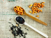 Två träskedar med vitaminic sunda havsbuckthornbär och svart te över säckvävbakgrund Att laga mat, royaltyfria bilder