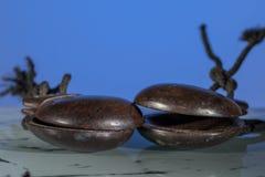 Två träspanska kastanjetter framme av blå bakgrund arkivfoton