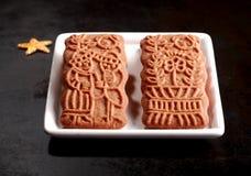 Två traditionella kryddiga holländska speculooskex Royaltyfri Fotografi